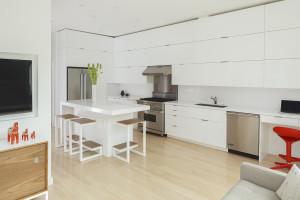 Eureka Valley Home Remodel Kitchen